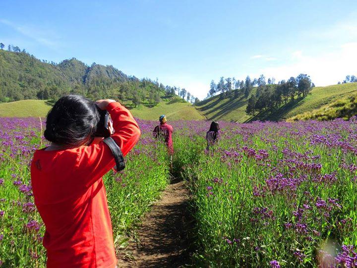 4 Tempat Menarik Penuh Cerita Di Gunung Semeru Yuk Piknik